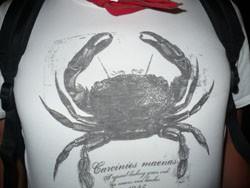 le crabe.jpg